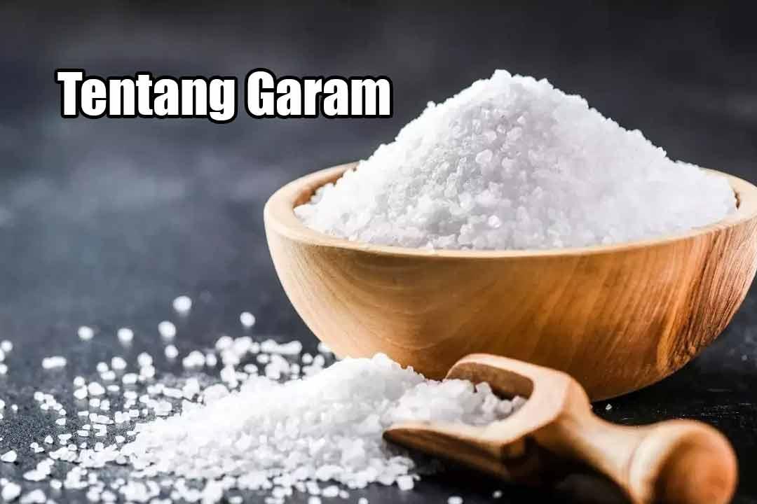 Tentang Garam