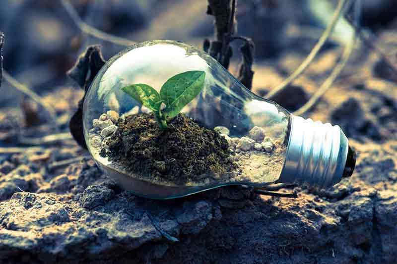 Cek Jurusan Teknik Bioenergi dan Kemurgi