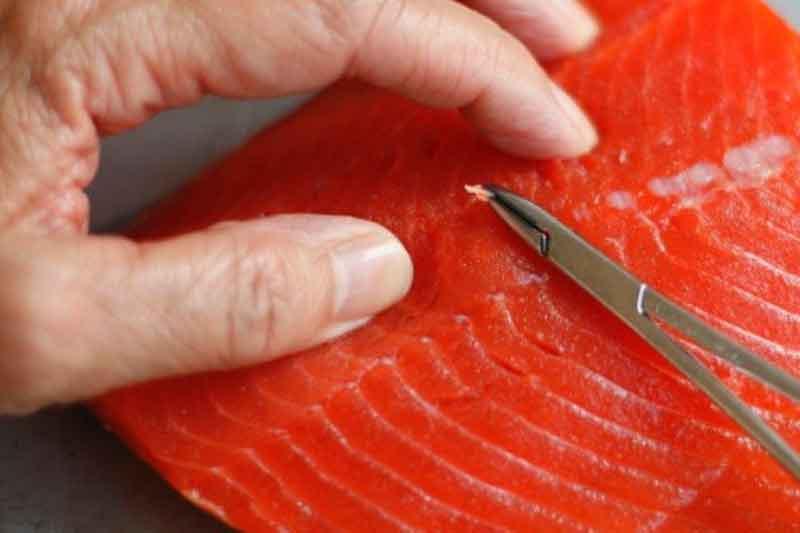 Inspirasi Kerajinan dari Tulang Ikan, Bisa Jadi Sumber Penghasilan